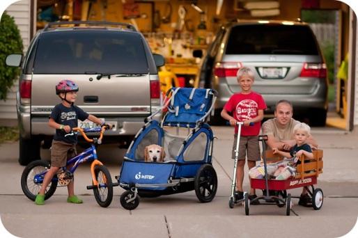 Finley in cart 2012.jpg